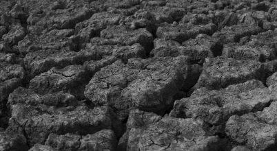 Kardoskúti Fehér-tó