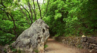 Oroszlán – szikla