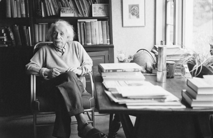 Az állatokról ír Einstein egy újonnan felfedezett levelében