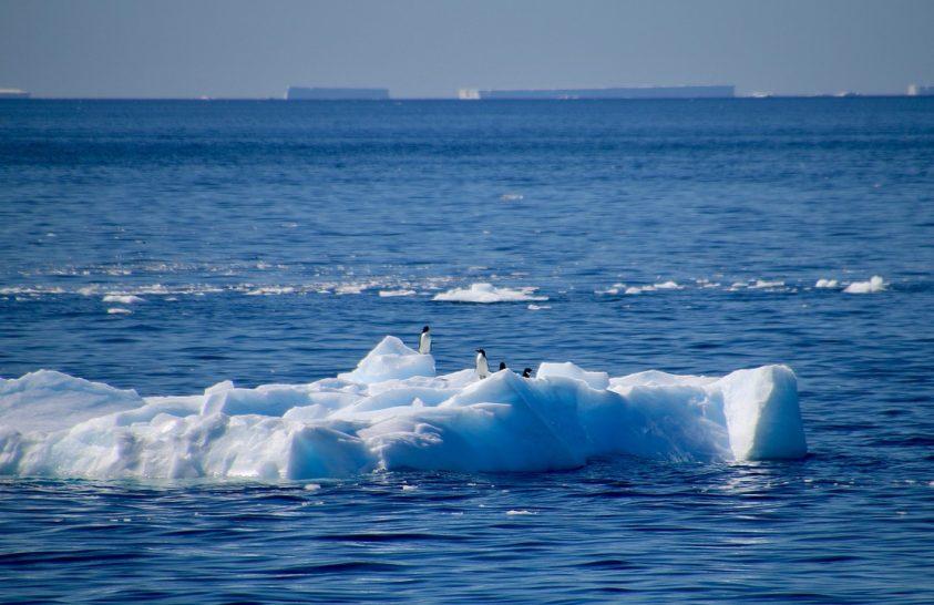 Lendületet kap a Déli-óceán védelme