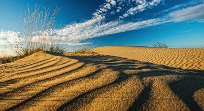 Sivatagi vidék a Duna-Tisza közén