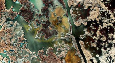 Természetfilm Magyarország vizeiről