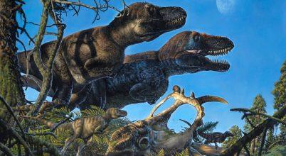 Sarkvidéki dinoszaurusz-bölcsődét fedeztek fel