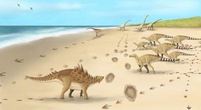 Az utolsó brit dinók lábnyomaira bukkantak