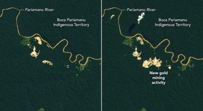 Aranybányászat és erdőirtás Amazóniában