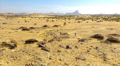 Titokzatos minta köré rendeződő sírokat találtak