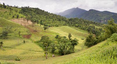 Az erdőirtás példátlan szénkibocsátást eredményezett Délkelet-Ázsiában