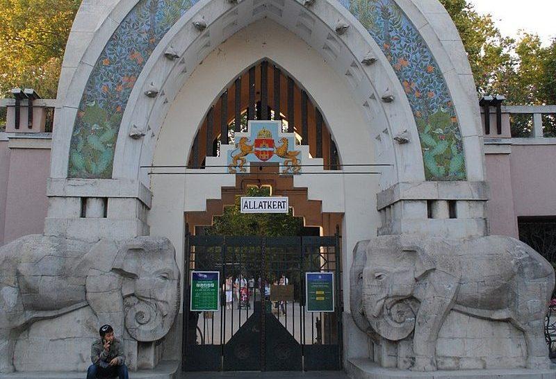 A fővárosi állatkert is a biológiai sokféleséget védő nemzetközi koalíció része