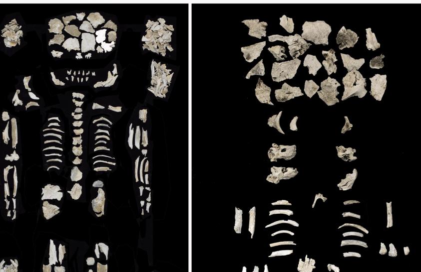 Ikrekkel terhes bronzkori nő sírjára bukkantak Szigetszentmiklósnál