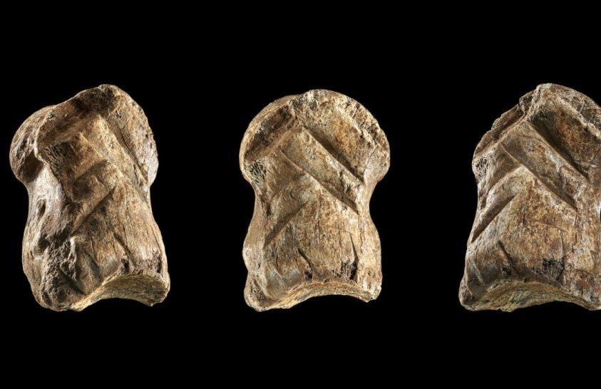 Csontfaragvány árulkodik a neandervölgyi művészetről