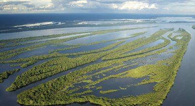 Így szorították vissza az erdőirtást a perui őslakosok