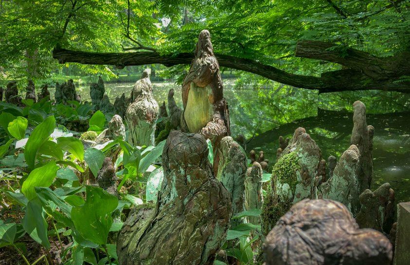 Séta hazánk egyik különleges botanikus kertjében