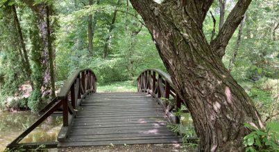 Ökológiai és kulturális programok a Vácrátóti Nemzeti Botanikus Kertben