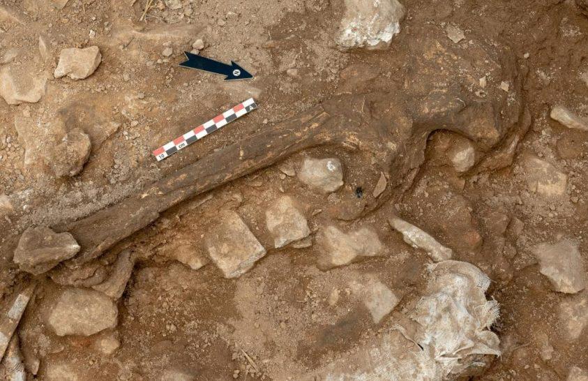 Őskori nő csontjaira bukkantak