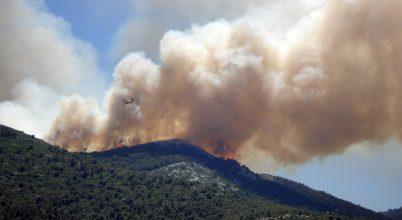 Milyen hatásuk van az erdőtüzeknek a csapadékra?