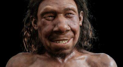 Rekonstruálták egy neandervölgyi arcát
