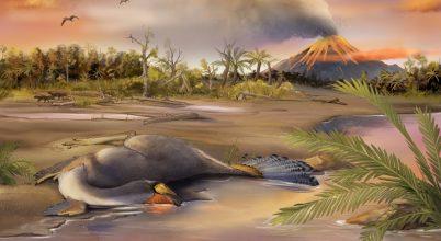Szerves molekulákat vontak ki egy dinoszaurusz sejtmagjaiból