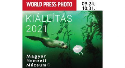 Hiteles képek, igaz történetek 2021-ből