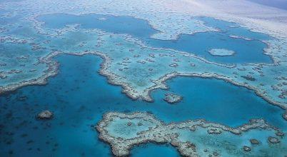 Térkép készült a világ trópusi korallzátonyairól