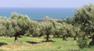 A túl kapzsi ipar okozhatta az ókori város bukását