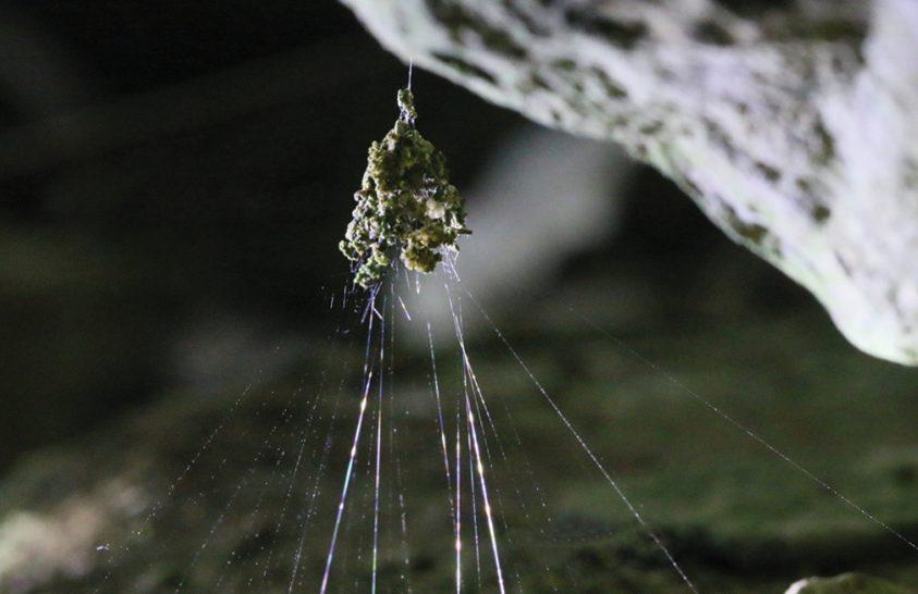 Pókhálók különleges anyagból készült díszítései