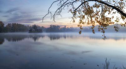 Ébredezik az ősz