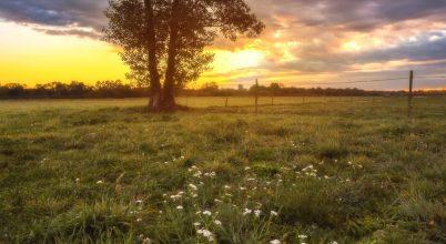 Napfelkelte a Zala Völgyéből