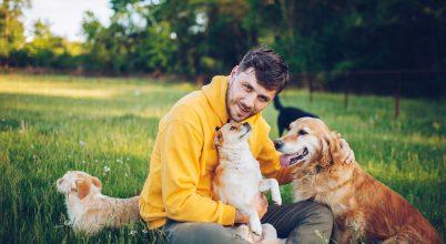 Ember és kutya