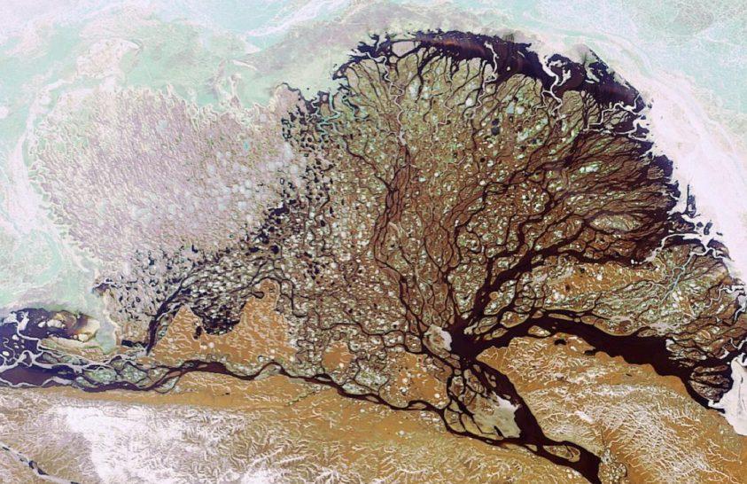 A sarkvidék legnagyobb deltája