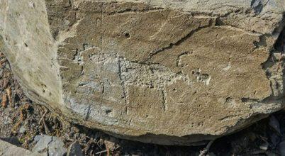 Ősi sziklarajzra bukkantak Csukcsföldön