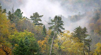 Aranyló ősz az orosz távol-keleten